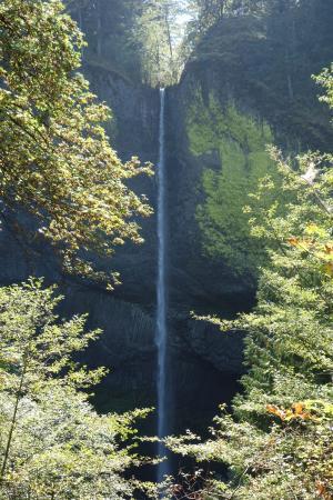 Hood River, OR: Latourell Falls