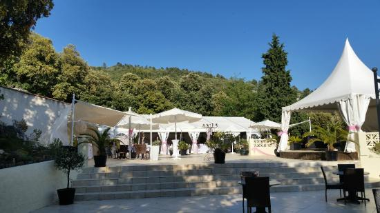 Signes, Francja: Vue terrasse et parc
