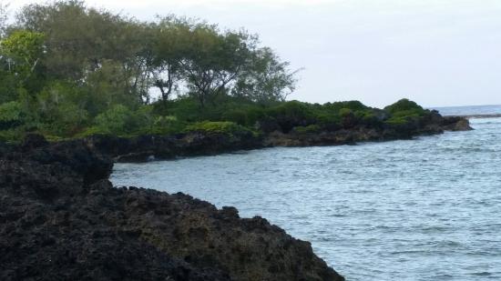 Foui, Tonga: White Sands Beach Resort