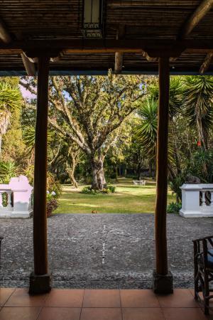 Hacienda Cusin: Aussicht vom Zimmer in den Park