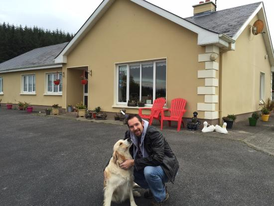 Tulla, İrlanda: Buster