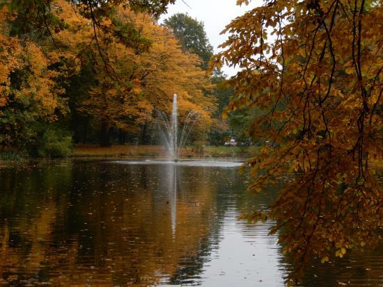 Bad Aibling, Tyskland: Kurpark im Herbst