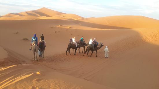 Bivouac Radoin Sahara Expeditions: i night camel ride camp  Radoin-saharaexpeditions