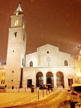 Cattedrale di Santa Maria Assunta : Cattedrale di Andria