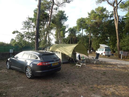 Villaggio Camping Bosco Selva : No set pitches