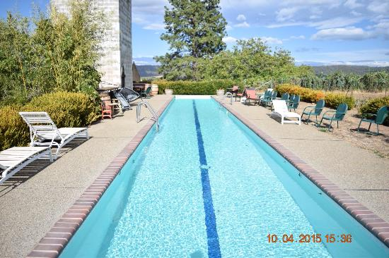 Fitzpatrick Winery and Lodge : Lap pool