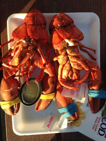 Belfast, ME: Fresh and delectable lobster