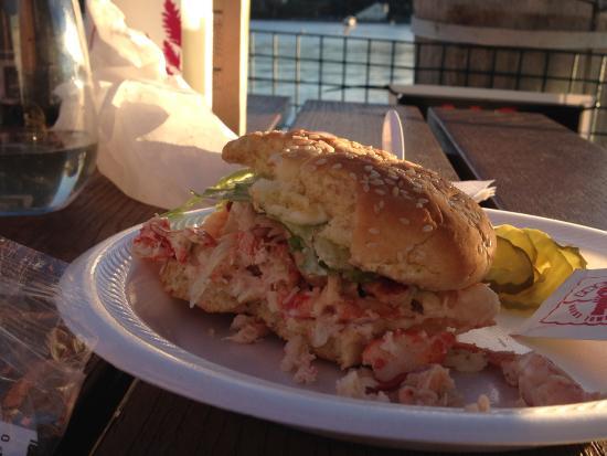Belfast, ME: Stuffed full lobster roll!