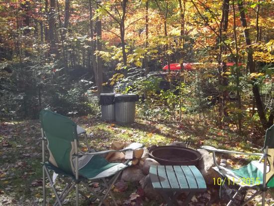 Greenwood Lodge and Campsites: Campsite