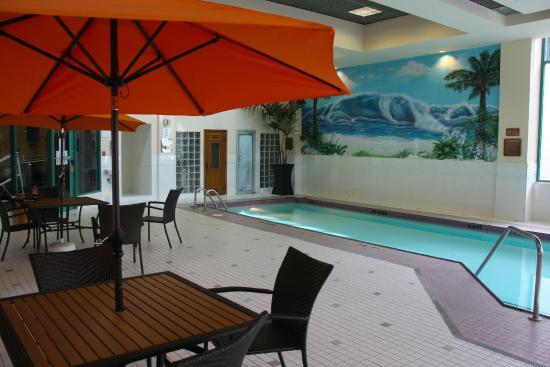 Rosedale On Robson Suite Hotel Expedia