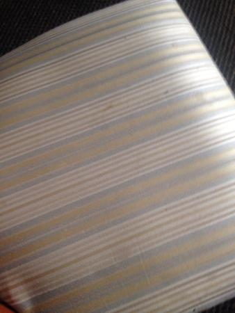 Candlewood Suites Knoxville Airport-Alcoa: Stains on chair