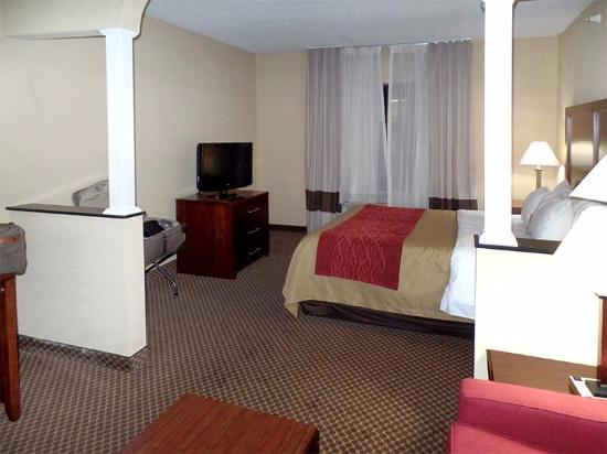 Comfort Inn & Suites: The room was a mini-suite; the bed was comfy and the pillows great