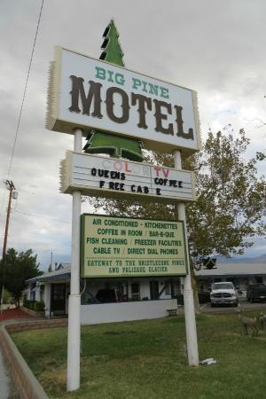 Big Pine Motel sign on Hwy 395