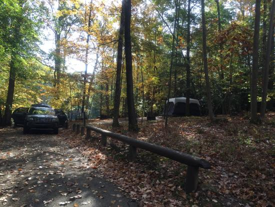 Large Beautiful Camp Sites Review Of Stuart Recreation