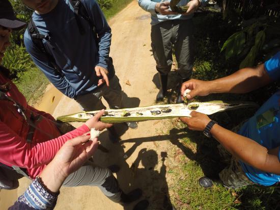 Allpahuayo Mishana National Reserve: Awesome fruit!