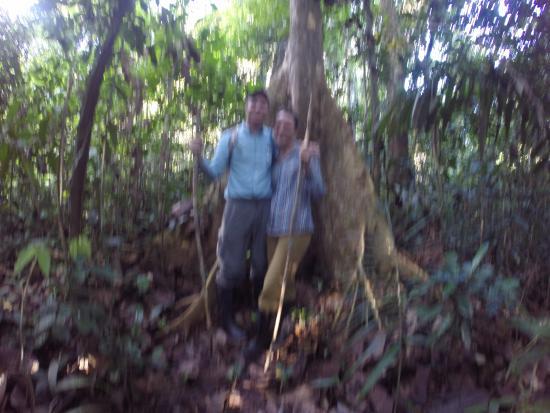 Allpahuayo Mishana National Reserve: Jungle Tour