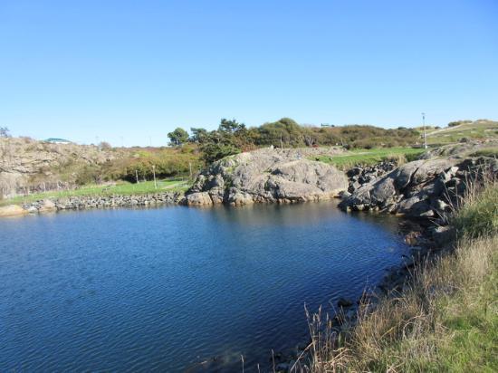 Macaulay Point Park