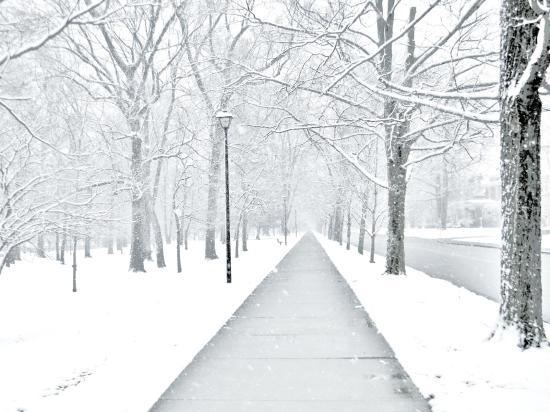 Ashland, KY: CANTRAL PARK SNOWY WALKWAY