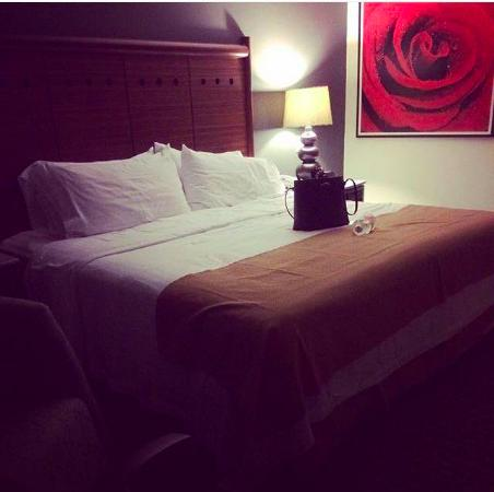 Holiday Inn Ciudad de Mexico Trade Center: Cama king size