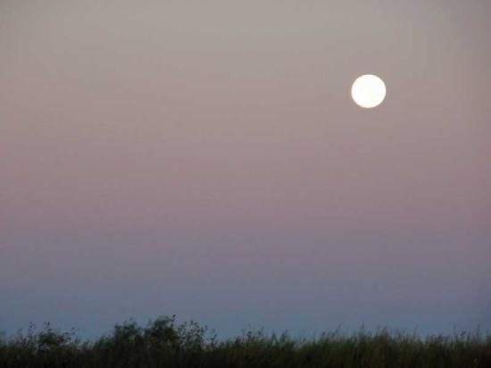 Tucumcari KOA: Moon Set over Tucumcari