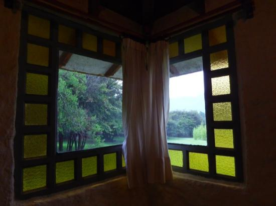 Hotel Bosques del Sol suites: The garden outside