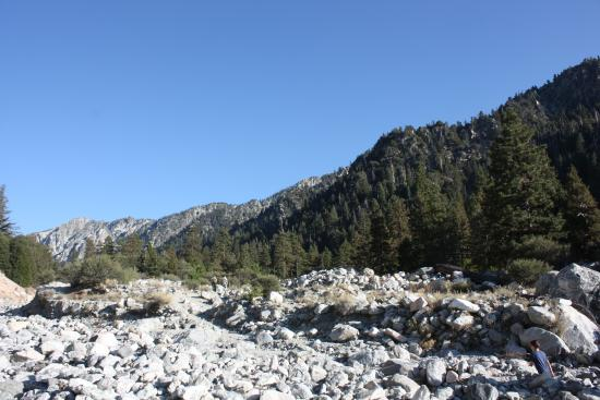 San Bernardino National Forest: Mill Creek in San Bernardino Mountains