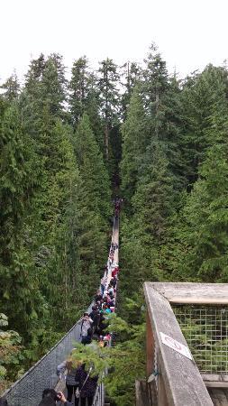 North Vancouver, Kanada: suspension bridge