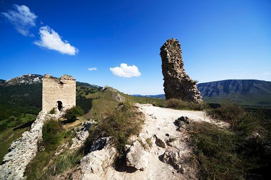 Coltesti Castle Ruins