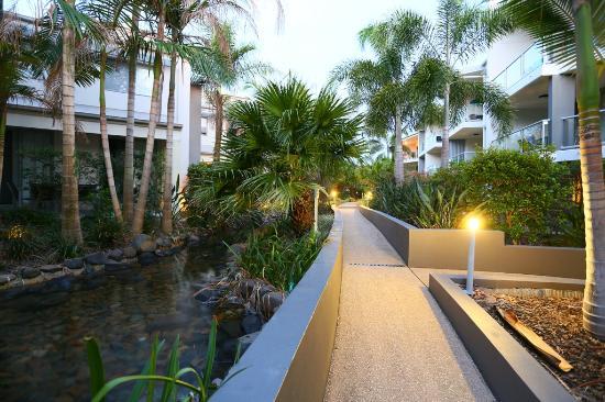 Coolum Beach, ออสเตรเลีย: Tropical walkways and streams