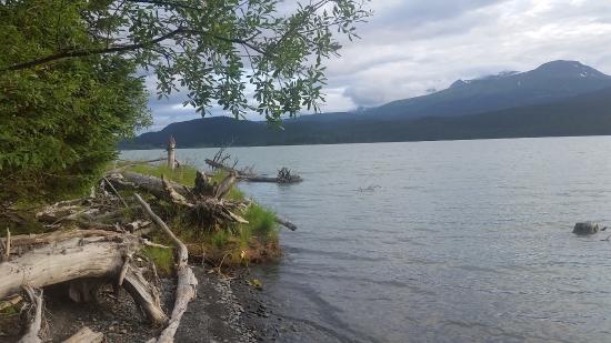 Renfro's Lakeside Retreat: View of Kenai Lake