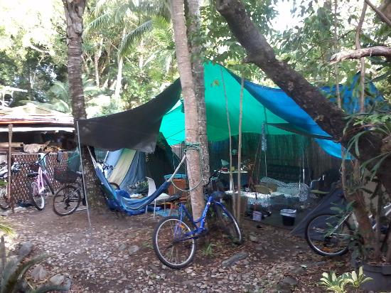 Dougies Backpackers Resort: long term camping