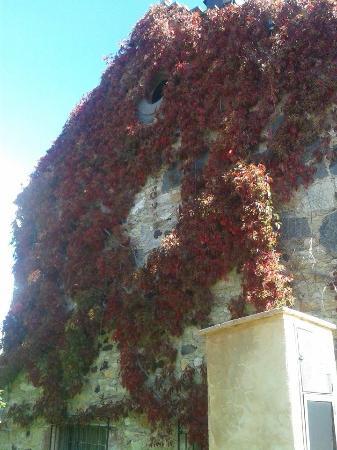 Riolago, Spagna: Colores de Otoño
