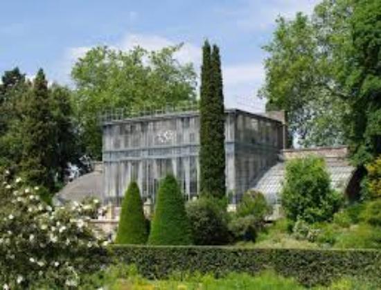 jardin des plantes magnifique serre avec fleurs aquatique - Jardin Des Plantes Rouen