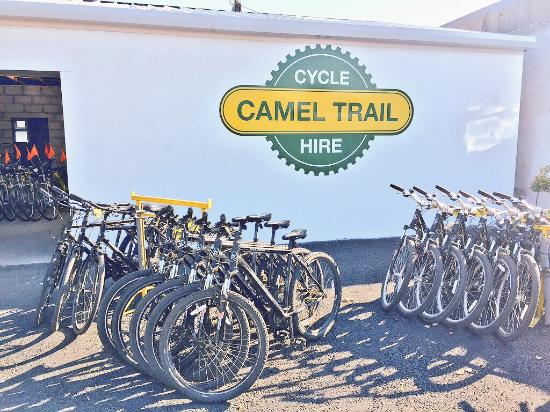 ‪Camel Trail Cycle Hire‬