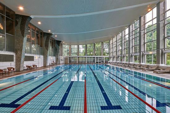 Pool bild von hilton frankfurt city centre frankfurt am main tripadvisor - Pool frankfurt ...