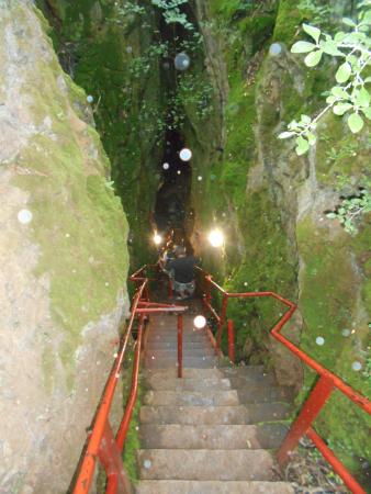 Gauteng, Zuid-Afrika: Steps into the Wonder Cave