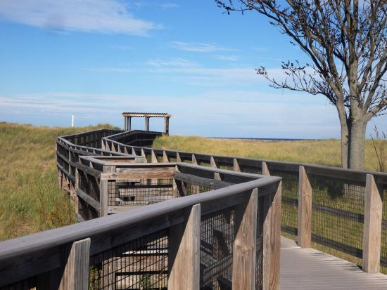 Plum Island, MA: way to the beach