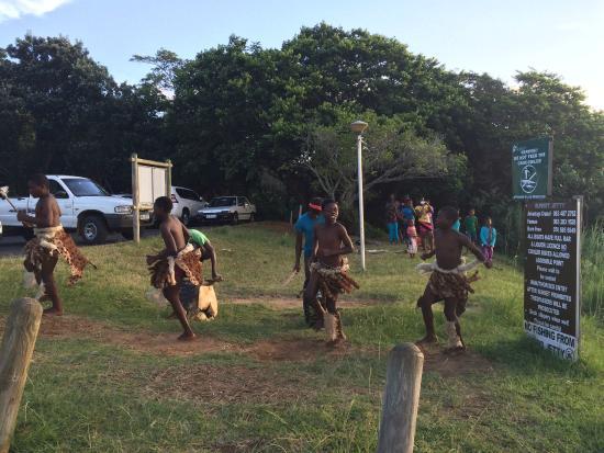 Tekweni Ecotours - Day Tours