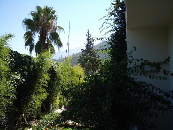 Majesty Marina Vista Fethiye: view
