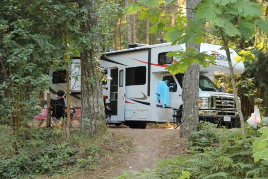 Mountainaire Campground and RV Park: Plaatsje onder de bomen