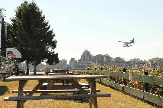 Westbay Marine Village & RV Park: Je ziet (en hoort) de watervliegtuigen