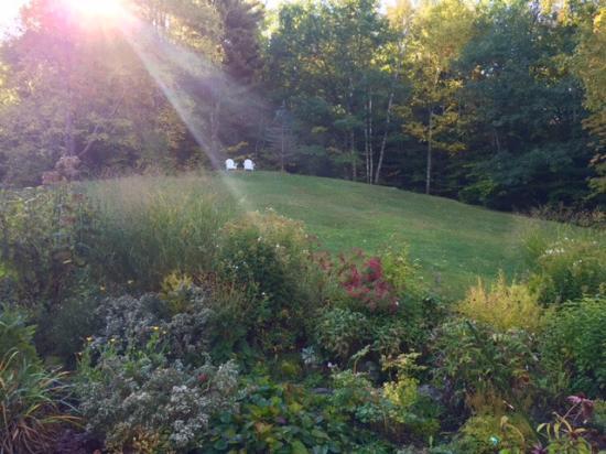 Darby Field Inn: Backyard