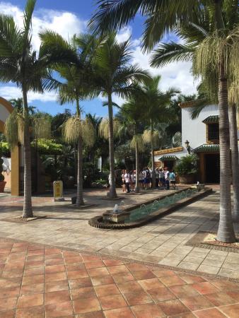 Fotograf a de jard n bot nico molino de inca for Jardin botanico torremolinos