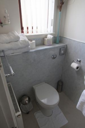 Dionard Guest House: Lavabo