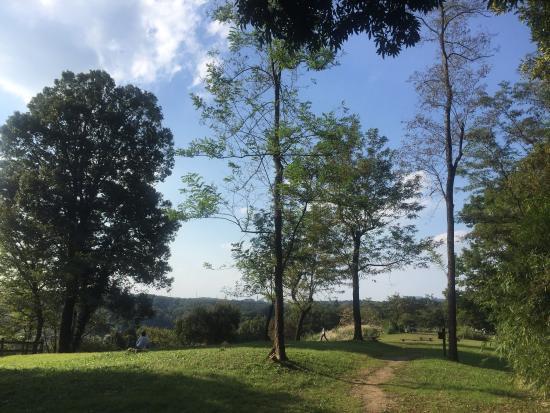 Oyamada Park