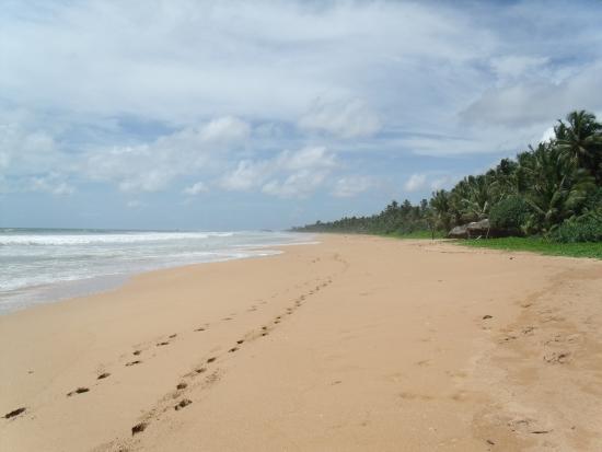 Bentota, Sri Lanka: Северная стороны пляжа