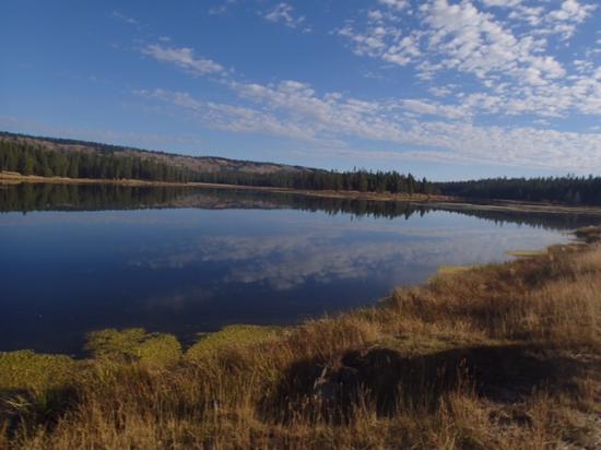 Harriman State Park: Harriman Park