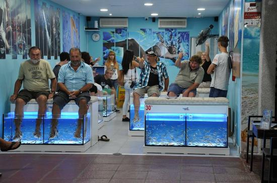 ‪Smiling Feet Fish Spa‬