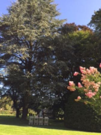 Vitre, ฝรั่งเศส: Garden
