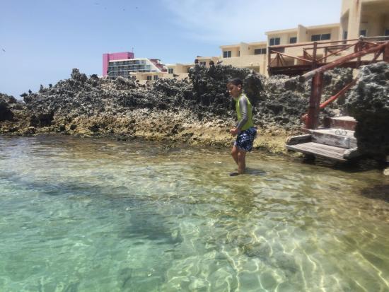 Piscina del rey part of mia reef hotel attractions for Isla leon piscina